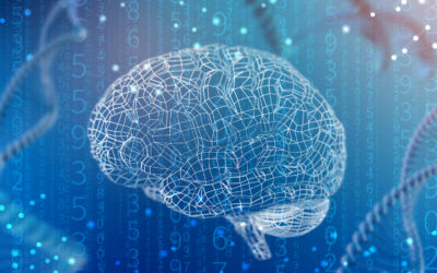 The importance of Neuroscience for the business World